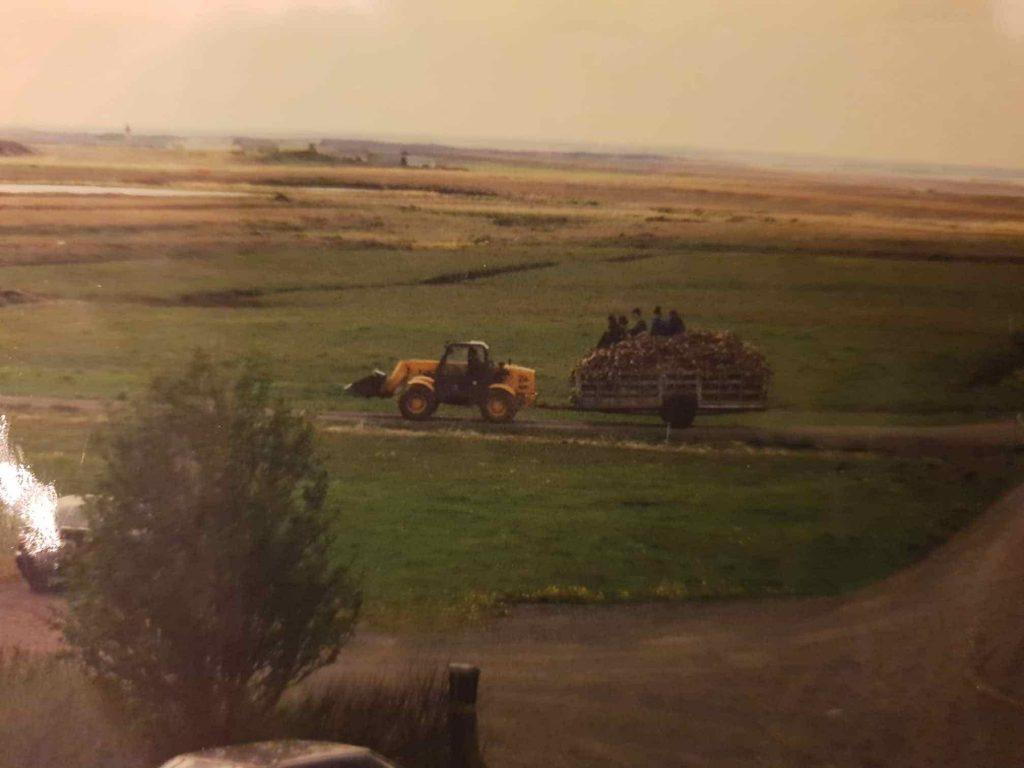 Útiþurrkaðir hausar keyrðir heim í vinnslu 1999