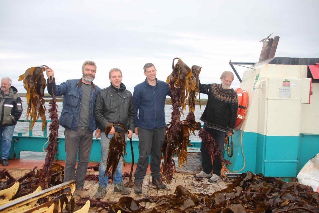 Sigurður, Ingvar, Colin og Karl Gunnars á Breiðafiði að skoða Þaramið.